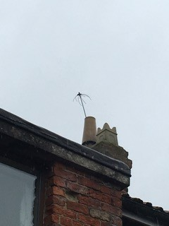 chimney sweep in york